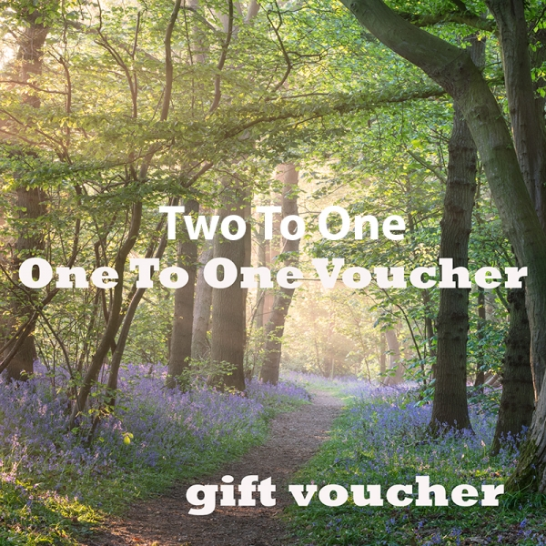 Two to one workshop gift voucher