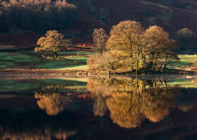 Autumn tress reflecting in Rydal Water