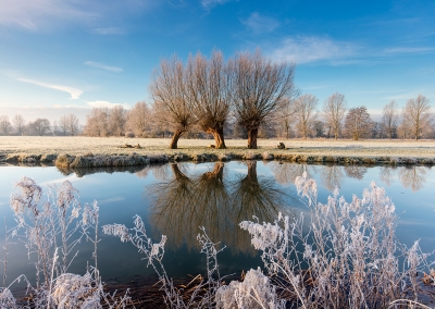 The River Stour on a frosty morning