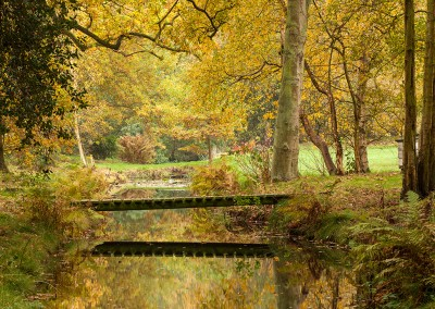 Autumn Colours at Ranworth on the Norfolk Broads