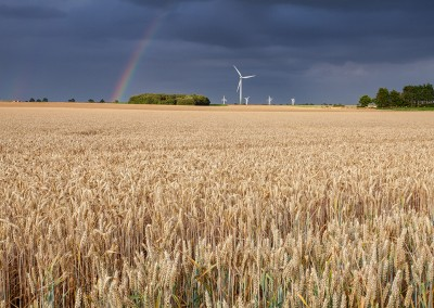 Rainbow over Winterton windfarm
