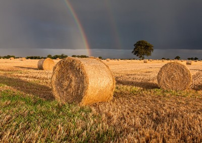 Rainbow over a freshly harvest Barley Field