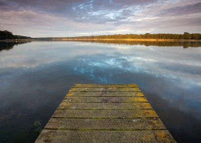 Rolleby Broad at first light on the Norfolk Broads