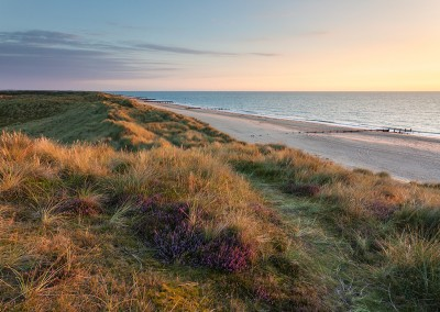 Winterton dunes and heather at dawn on a summer's morning