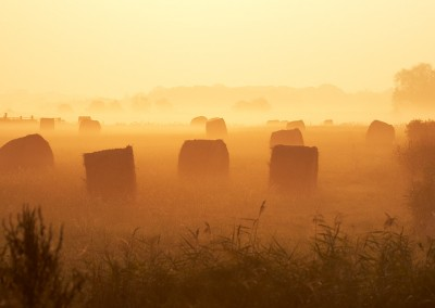 Hay bales at sunrise on the misty marshes next to the Norfolk Broads at Acle Bridge