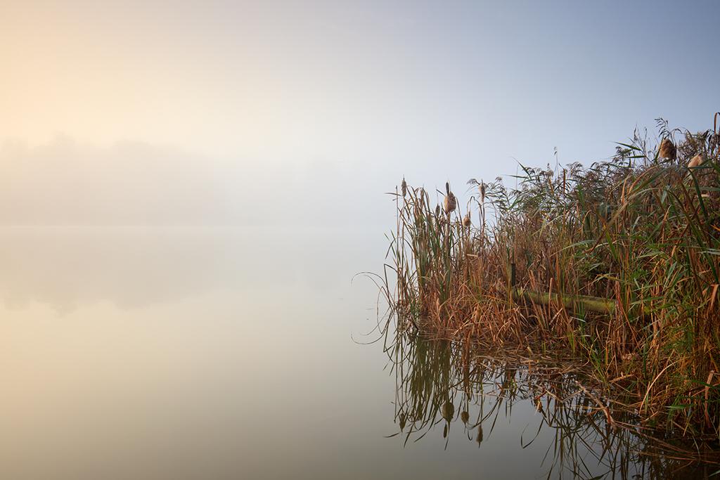 Blickling lake mist